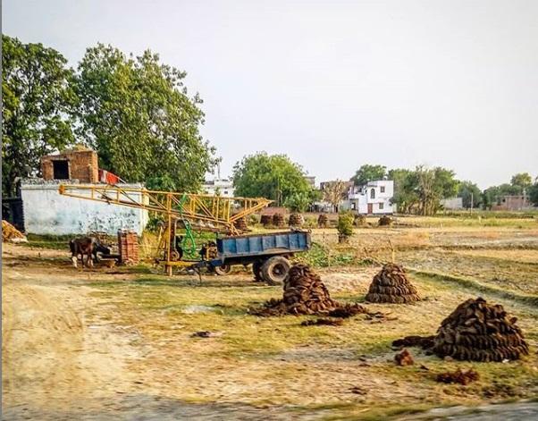 коровьи лепешки в индии